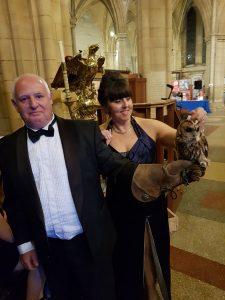 Cornwall Tourism Awards Owl